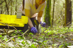 How to Become a Conservation Scientist